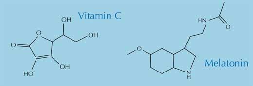 Percobaan Mencari Makanan Antioksidan